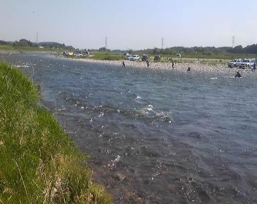 鮎釣り 那珂川 2010
